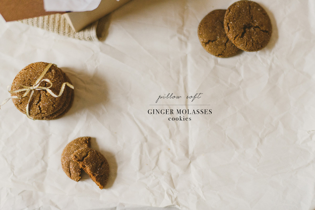Ginger Molasses Cookie -7 copy